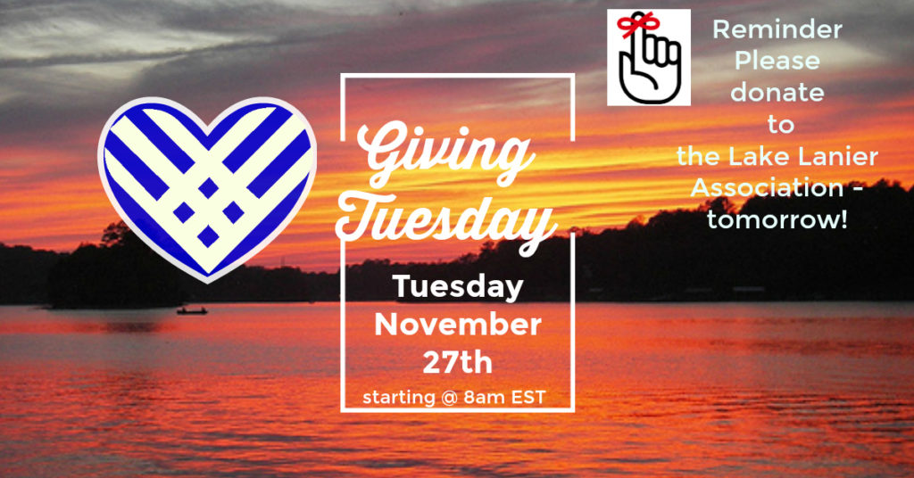 Lake Lanier Association Giving Tuesday 2018 GA