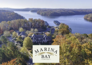 Sheila Davis Group #1 Agents on Lake Lanier Real Estate Marina Bay on Lake Lanier homes for sale