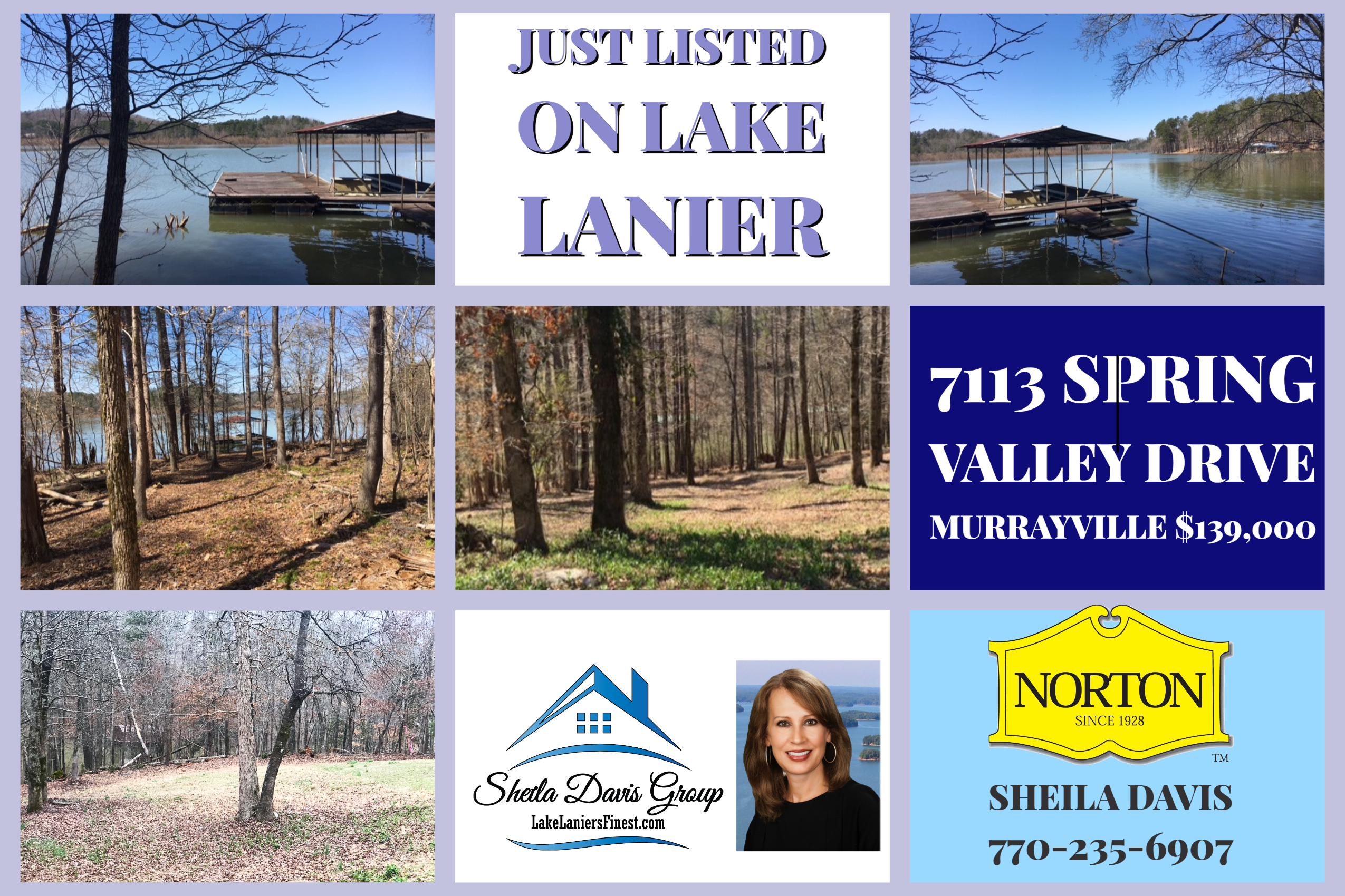 #1 Realtor Lake Lanier Homes for Sale