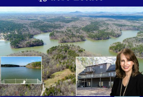 Lake Lanier homes for sale docks Sheila Davis Group Norton Agency